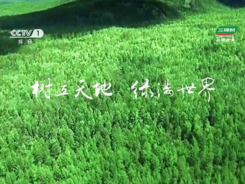 CCTV-1《大国品牌》三棵树品牌故事  第一部